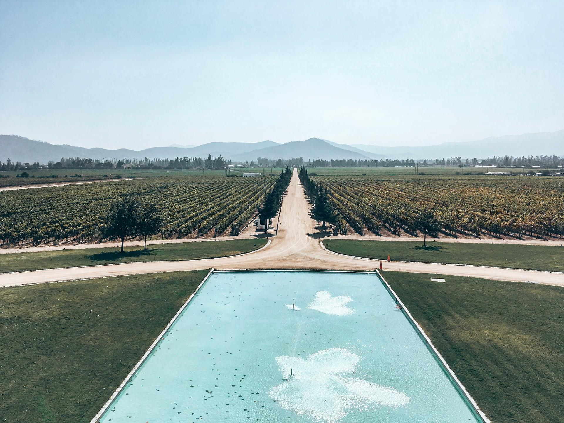Casablanca Wine Region Chile