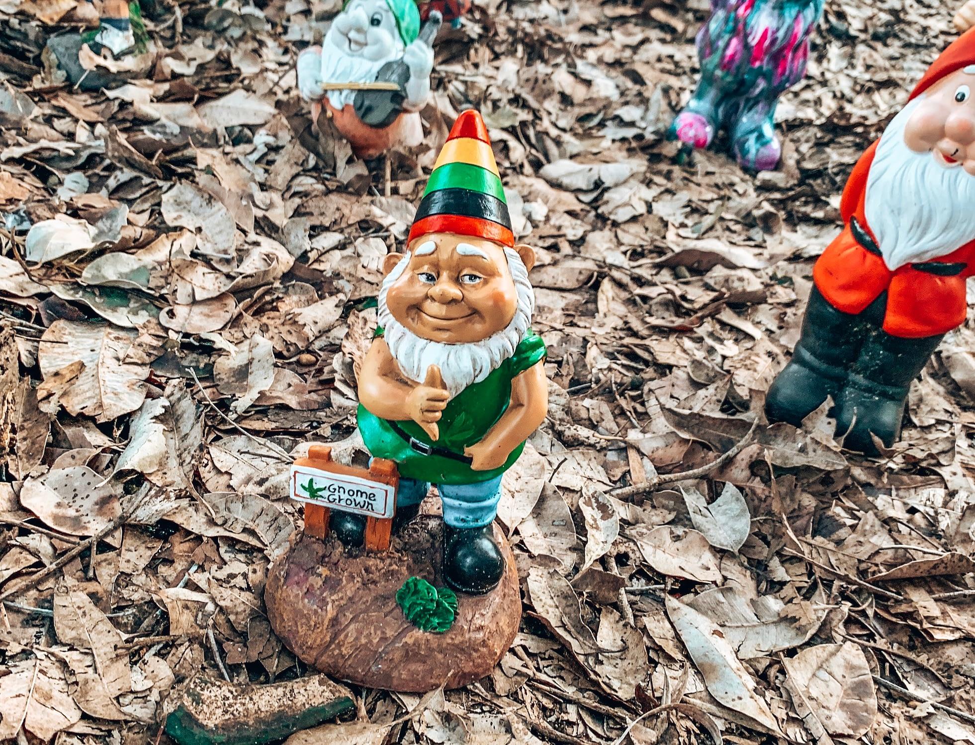Gnomesville - Gnome painted like a Rastafarian