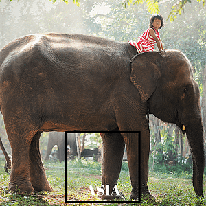 Small child riding an elephant - Guides to Asia