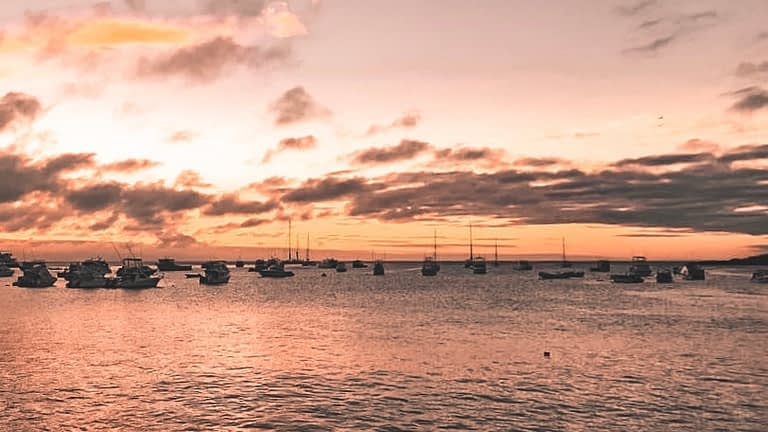 Sunset with docked boats on the water