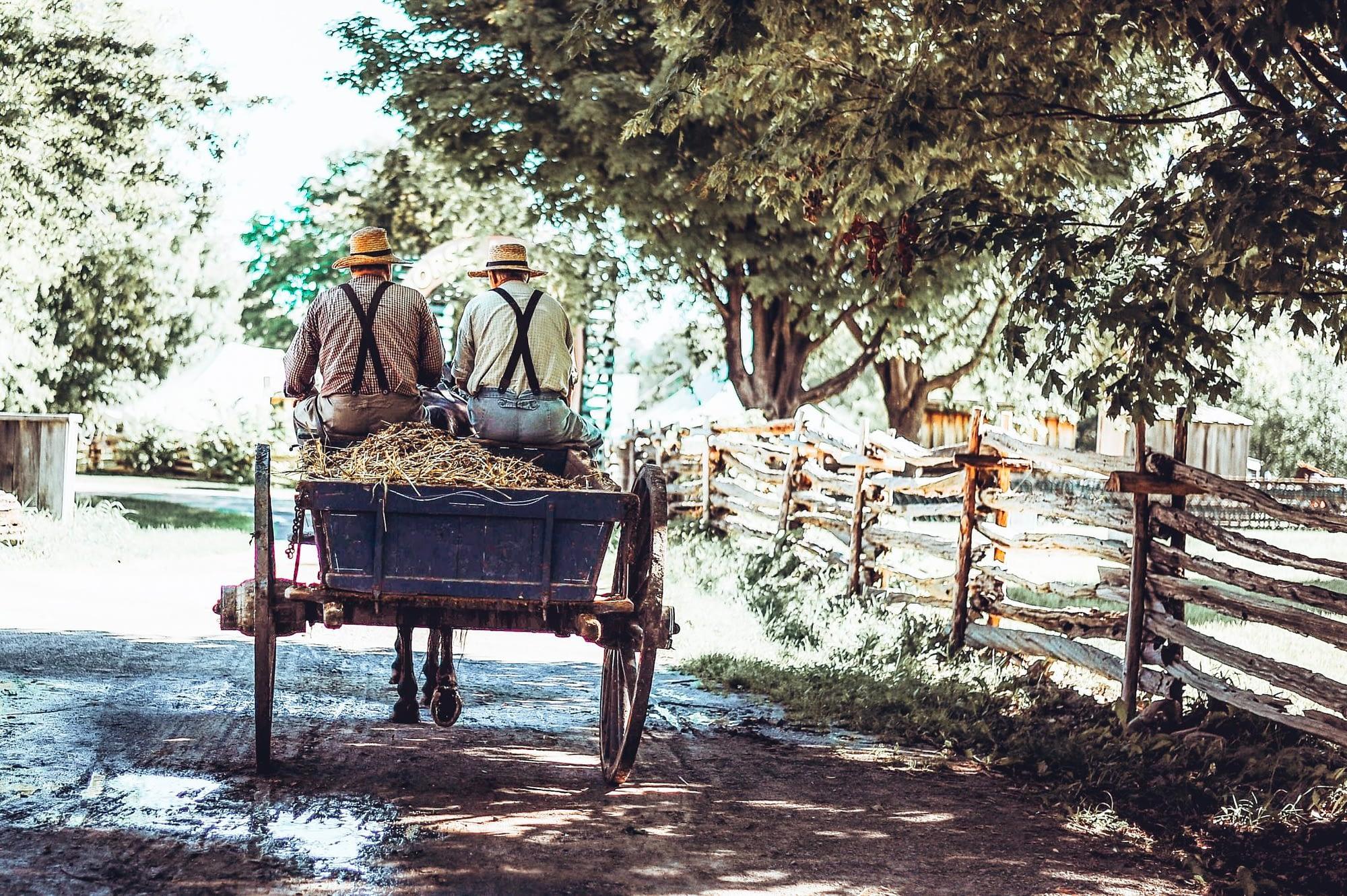 Lancaster Amish