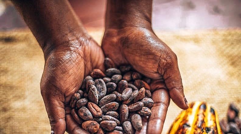 Tanna Coffee - local Vanuatu coffee