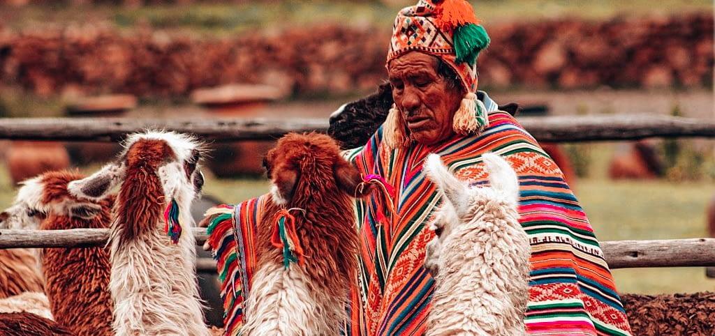 Latin American man with Llamas