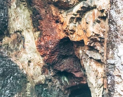 Caves Punta del Este