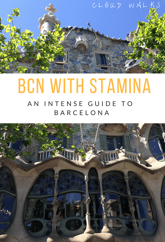 Guide to 24 hours in Barcelona - Travel Guides for Barcelona - Image of Curvy building with plants flowing down the front