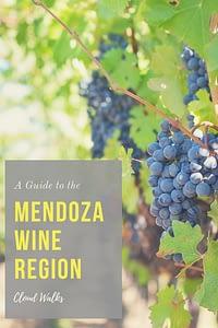 A guide to the Mendoza Wine Region