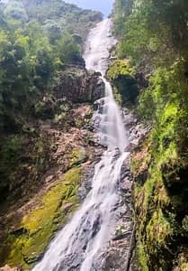 Montezuma Falls - Tasmania - Image of tall narrow waterfall cascading over rocks with greenery on either side - Lap of Tasmania