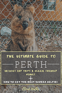 The Ultimate Guide To Perth including Day Trips from Perth, Vegetarian Restaurants and Cocktail Bars