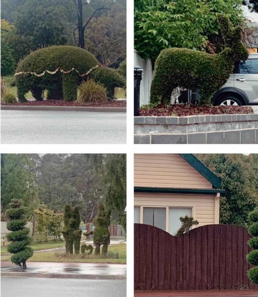 Railton Tasmania - Collage of bushes shaped liked animals - Things to Do in Tasmania
